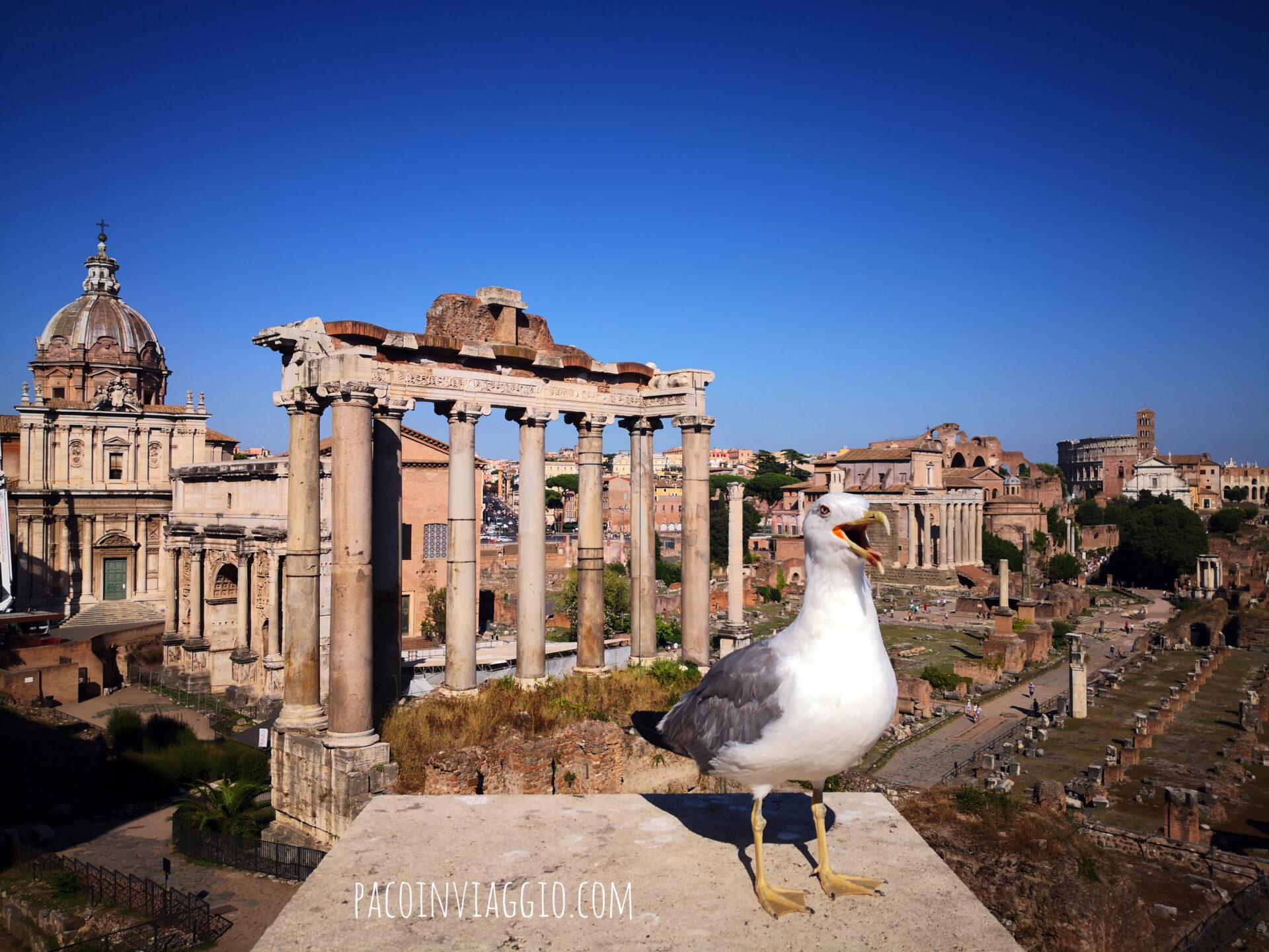 #soloFoto: cose di Roma