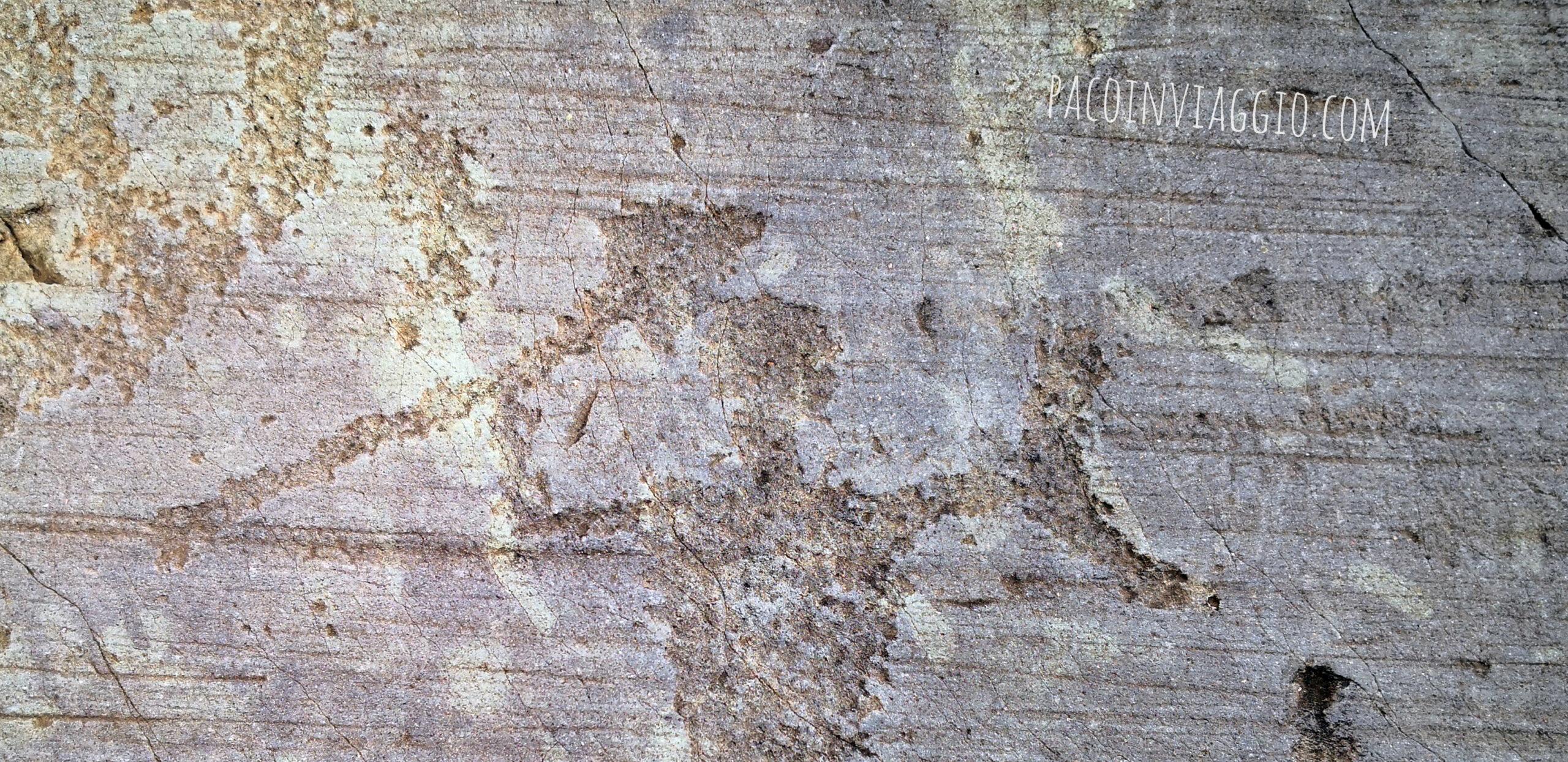 Le incisioni rupestri e le stelle cancellate